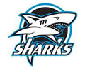 Riverview Sharks